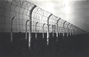 funfteichen-concentration-camp