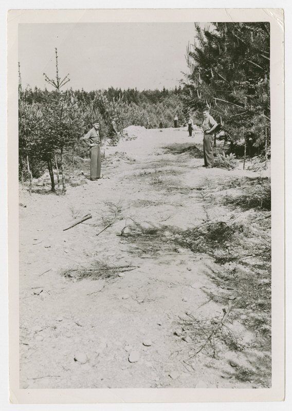 american-soldiers-view-mass-graves